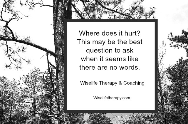 Wisdom-for-hard-times-when-there-are-no-words-from-wiselifetherapy.com-Patty-Bechtold-therapist-and-life-coach-in-Santa-Rosa-C.jpg