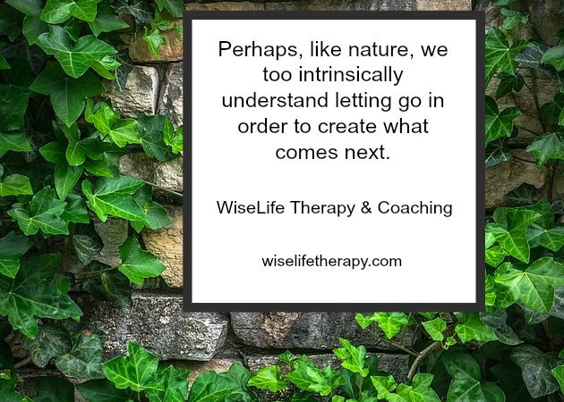 Thoughts-on-letting-go-in-order-to-create-what-comes-next-from-Santa-Rosa-Therapist-and-Life-Coach-Patty-Bechtold-at-wiselifetherapy.com_.jpg
