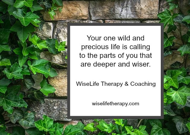 Santa Rosa therapist Patty Bechtold blogs about what it means to listen to your one wild and precious life at wiselifetherapy.com
