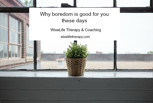 Santa Rosa psychotherapist Patty Bechtold blogs about why boredom is good for you at wiselifetherapy.com