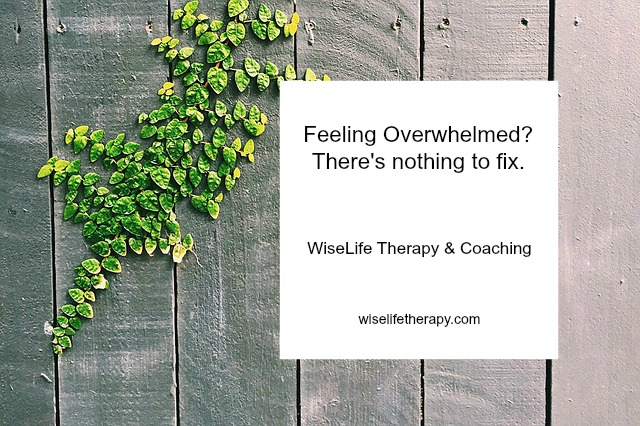 Santa Rosa therapist Patty Bechtold blogs about why feeling overwhelmed during COVID 19 does not mean there's anything to fix about yourself at wiselifetherapy.com