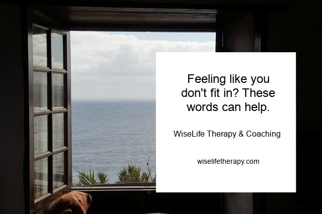 Santa Rosa Therapist Patty Bechtold writes about feeling like you don't fit in and explores words that can help at wiselifetherapy.com