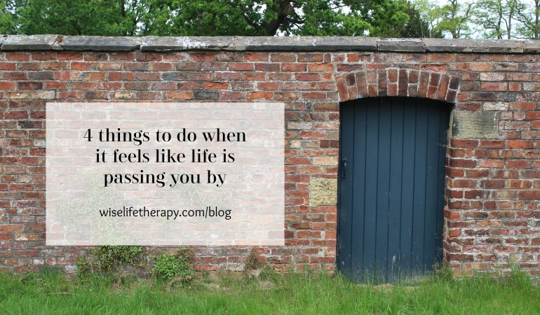 door in red brick wall, words - 4 things to do when it feels like life is passing you by, blog post by Santa Rosa therapist Patty Bechtold at wiselifetherapy.com